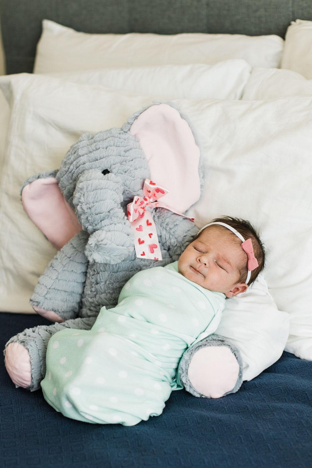 Newborn - Perspective Portraits